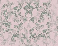 Vintage Damask pattern Vector ornament decor. Baroque grunge background textures. Royal victorian trendy designs Royalty Free Stock Photo
