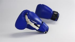 Vintage dark blue color Box gloves fall on white surface stock video footage