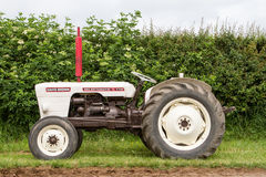 A vintage david brown white tractors parked up Stock Photo