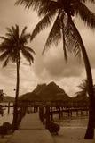Vintage de Bora Bora. Soporte Otemanu entre las palmas. Polinesia francesa Imagen de archivo