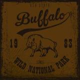 Vintage de Buffalo extérieur illustration de vecteur