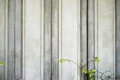 Vintage de la puerta y acción de madera de la foto del fondo Imagen de archivo
