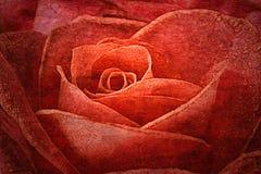 Vintage de las rosas imagen de archivo libre de regalías