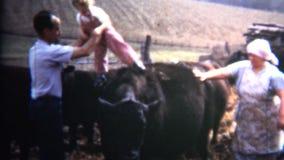 (vintage de 8m m) el papá 1952 pone al bebé en el ganado de Iowa como broma metrajes