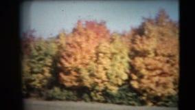 vintage de 8m m - los años 60 Autumn Colors Pan almacen de metraje de vídeo