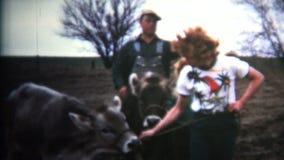 (vintage de 8mm) vaches 1952 à Napoleon Dynamite Type Owned By L'Iowa, Etats-Unis banque de vidéos
