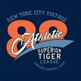 Vintage de New York sportif Image libre de droits