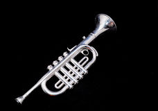 Vintage de plata Toy Trumpet Fotos de archivo libres de regalías