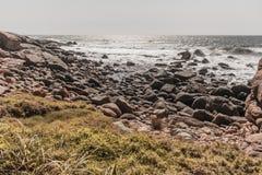 Vintage de Rocky Beach Ocean Summer Coastline Fotografia de Stock