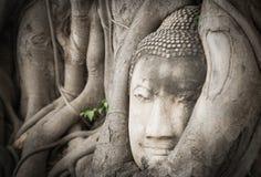 Vintage de statue de Bouddha Photos libres de droits