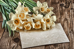 Vintage decoration with daffodils flowers on old wooden board with copy space Stock Images