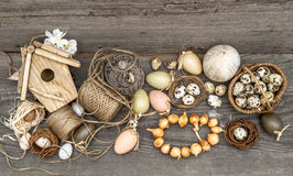 Vintage decoration with eggs and flower bulbs Stock Images
