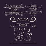 Vintage Decorations Elements. Flourishes Calligraphic Ornaments and Frames. vector illustration.  Royalty Free Stock Photo