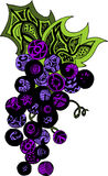 Vintage decorative grapes. Vector illustration of abstract logo Royalty Free Stock Photos