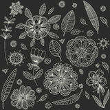 Vintage decorative plants and flowers collection. Royalty Free Stock Images