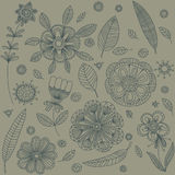 Vintage decorative plants and flowers collection. Royalty Free Stock Photography