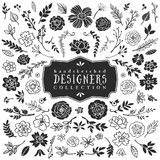 Vintage decorative plants and flowers collection. Hand drawn stock illustration