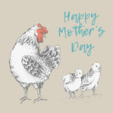 Vintage design with chickens. Happy Mothers day. Royalty Free Stock Image