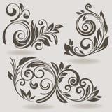 Vintage design elements. Vintage vector design elements  on beige background. Set 34 Stock Photo