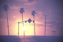 Vintage dimmed sunset picture of palms and poles on street again Royalty Free Stock Photos