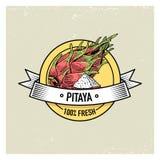 Vintage do fruto de Pitaya ou de dragão, frutos frescos tirados mão fundo, plantas do verão, vegetariano e citrino orgânico e ilustração stock