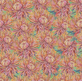 Vintage drawing of flowers Royalty Free Stock Photos