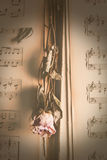 Vintage dry Flowers on music Royalty Free Stock Image
