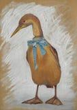 Vintage duck pastel illustration. Hand drawn vintage duck pastel illustration. Postcard. Duck with blue ribbon Stock Images