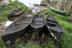 Vintage dugout canoes in Panama Royalty Free Stock Images
