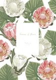 Vintage e cartão floral luxuoso do vetor com flores mim ilustração do vetor