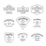 Vintage e grupo retro dos logotipos e de etiquetas do estilo ilustração royalty free