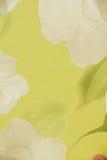 Vintage e sumário do papel de parede do papel de parede dos detalhes Imagem de Stock