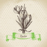 Vintage Easter background with crocus flowers. Hand drawn illust Stock Photo