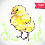 Vintage Easter background with hand drawn sketch illustration and sticker Stock Photos