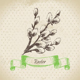 Vintage Easter background with pussy-willow. Hand royalty free illustration