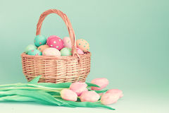 Vintage easter eggs and tulips Stock Image