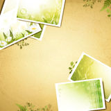 Vintage eco background with nature photos Stock Image
