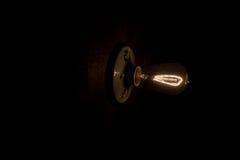Vintage Edison Light Bulb Image stock