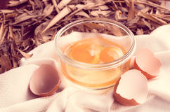 Vintage eggs color processed Stock Photos