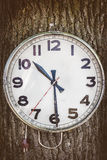 Vintage electric clock hanging on a tree Stock Photos