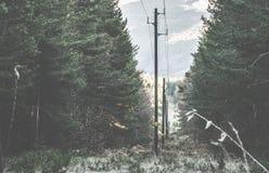 Vintage electric poles Stock Image