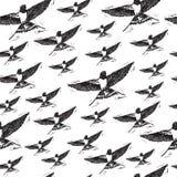 Vintage elegant seamless pattern with black Swallows on white background. Royalty Free Stock Image