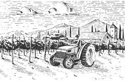 Vintage engraved, hand drawn vineyards landscape, tuskany fields Stock Photo