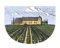 Vintage engraved, hand drawn vineyards landscape, tuskany fields, old looking scratchboard or tatooo style Stock Images