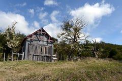 Free Vintage Estate Vicuna In Tierra Del Fuego Royalty Free Stock Photo - 73170915