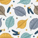 Engraving seamless pattern of birch leaves and seeds. Royalty Free Stock Photos