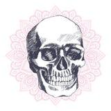 Vintage ethnic hand drawn human skull Royalty Free Stock Photography