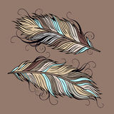 Vintage ethnic vector Feathers Stock Photo
