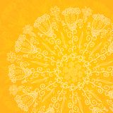 Vintage ethnic vector ornament orange background Royalty Free Stock Images