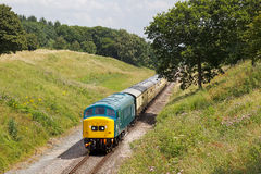 Vintage ex BR diesel Royalty Free Stock Photography